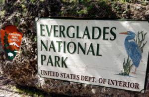 Le-Everglades