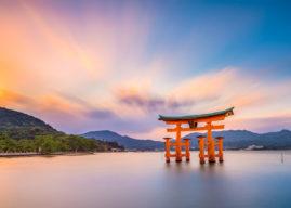 Mangiare vegetariano e Vegan in Giappone – La guida per sopravvivere