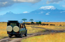 migliore safari africa
