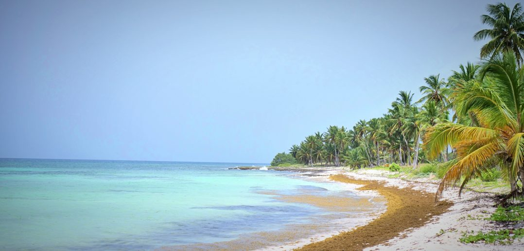 spiaggia saona