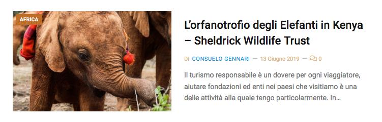 adozione elefante