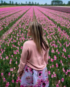 dove vedere i tulipani