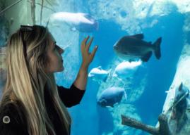Aquatis il più grande Acquario d'acqua dolce in Europa