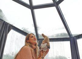Dormire in un Igloo di vetro a Rovaniemi – Santa's Igloos