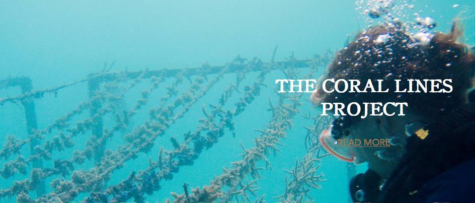 progetto coralli maldive