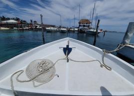 Isla Mujeres – Immersioni e Snorkeling